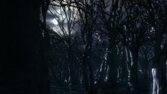 Dead forest and moon at night HD Stock Footage