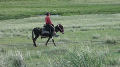 Boy spurring, riding donkey on grasslands in Central Asia Stock Footage