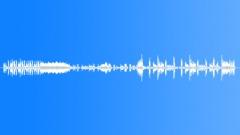 Stock Music of Chitwan Park 2