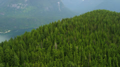 Aerial view Harrison Lake freshwater lake Spruce trees wilderness, Canada Stock Footage