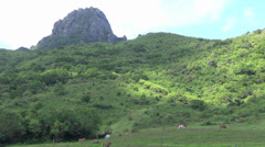 Mountain of kenting national park,taiwan Stock Footage