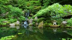 Zen garden Stock Footage