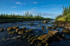 Landscape with forest, river and stones Stock Photos
