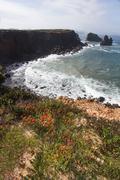 Coastal algarve region near sagres, portugal Stock Photos