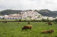 Stock Photo of odeceixe village