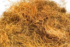 maize beard tea - stock photo