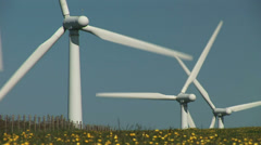 Wind turbines and flowers - stock footage