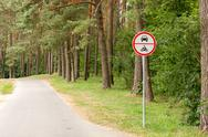 Stock Photo of no vehicles traffic sign in forest