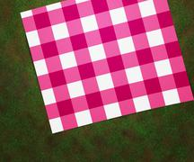 Picnic blanket Stock Illustration