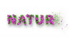 NATURE Text 3D Motion Graphics Stock Footage