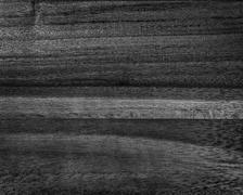 black acacia texture - stock photo
