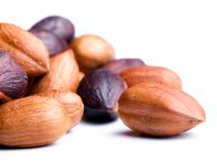 Hazelnut kernels Stock Photos