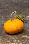 Stock Photo of autumn pumpkins