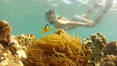 Snorkeler girl and clown fish Stock Footage