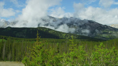 Mountain Peaks Coniferous forest, Canada, - stock footage