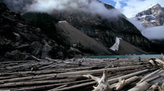 Driftwood timber logs Lake Moraine, Banff, Canada Stock Footage