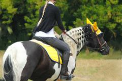 Beautiful horse riding competitions Stock Photos