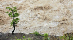Natures storm fast flowing down flooded mountain river Stock Footage