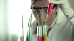 Scientist injecting chemical substance into test tubes with plants HD - stock footage