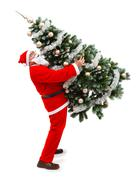 santa claus carrying a decorated christmas tree - stock photo