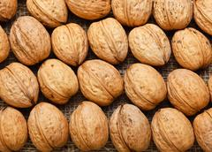 Top view of arranged walnuts - stock photo