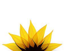 Stock Illustration of Sunflower part. Vector