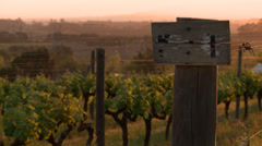 Sign board in front of a vineyard Stock Footage