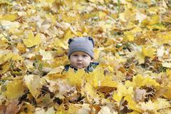 Young boy covered with autumn leaves Stock Photos