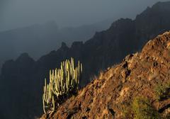 Los gigantes cliffs at tenerife, canary island Stock Photos
