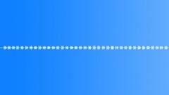 Cricket Loop 01 - sound effect
