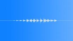 Grasshopper loop 02 Sound Effect