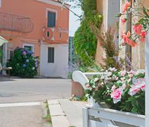 Street with flowers Stock Photos