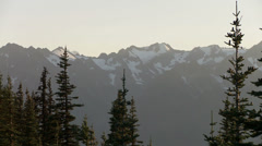 Olympic National Park, Mountains, Forest, Hurricane Ridge Stock Footage