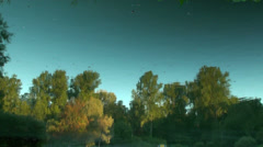 Reflection of trees in the water Stock Footage