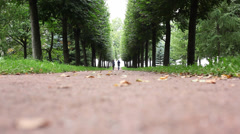 Girls in the Peterhof Imperial Palace and Park Stock Footage