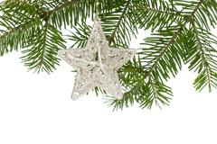 Christmas silver star on the fir branch Stock Photos