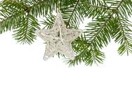 Stock Photo of christmas silver star on the fir branch