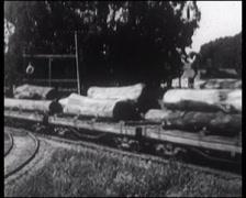 1915 - Redwood Lumber Mill 01 Stock Footage