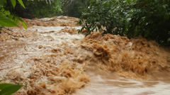 Mud and water pouring down a jungle watercourse after very heavy rain, Ecuador.  - stock footage