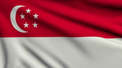 Flag of Singapore looping Stock Footage