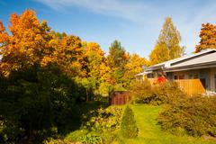 Bright autumn colors in backyard trees - stock photo