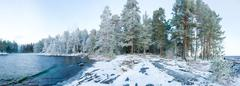 Wintry forest near lake panorama Stock Photos