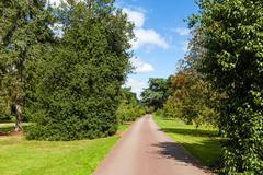 path through beautiful summer garden - stock photo