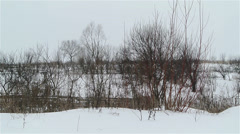 Winter landscape in suburb - stock footage
