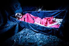 Halloween decoration doll skeleton Stock Photos