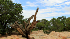 Colorado National Monument time lapse Stock Footage