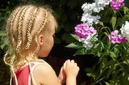 Stock Photo of little girl near the hesperis plant