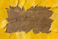 Autumn border from fallen leaves Stock Photos