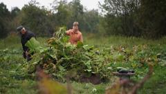 Garden work Stock Footage