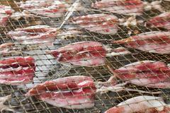 squid drying on net - stock photo